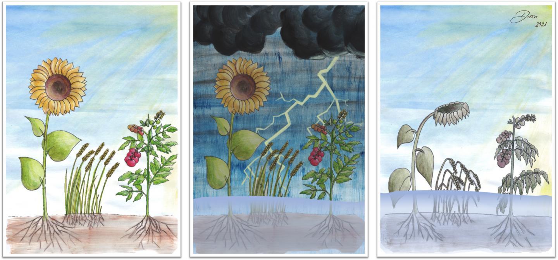 Acid Sensor Discovered in Plants