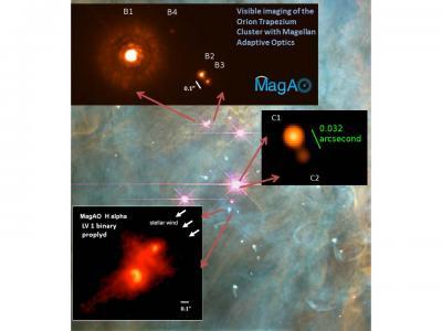 orion nebula and human brain - photo #13