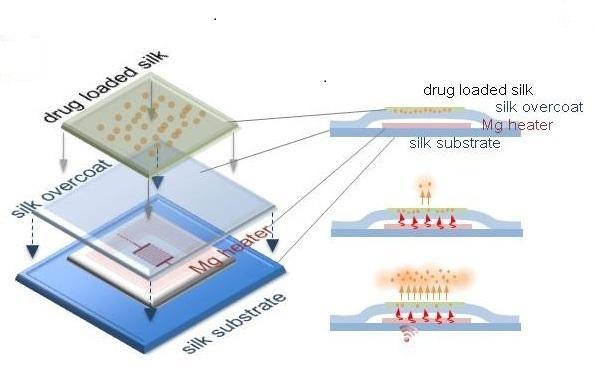 可分解的電子材料設計,用來對抗細菌感染。